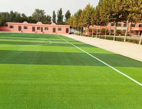 卫校绿化运动草坪
